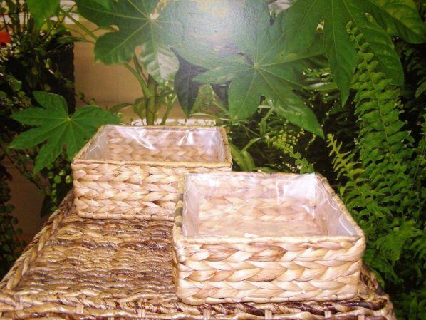 Miska- vodní hyacint - sada 2 ks