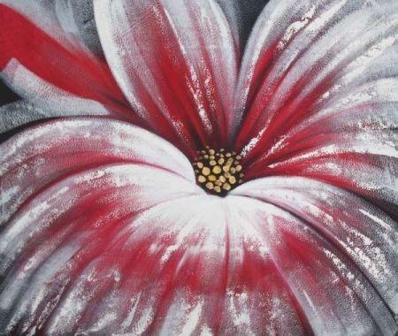 Obraz - Krásný květ