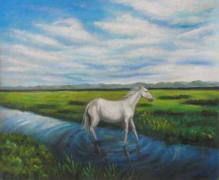 Obraz - Kůň na louce