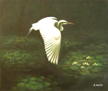 Obraz - Letící volavka a lekníny