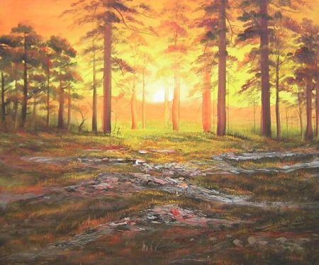 Obraz - Les v západu slunce