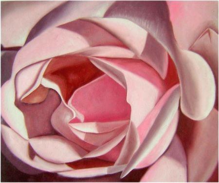 Obraz - Růžová růže