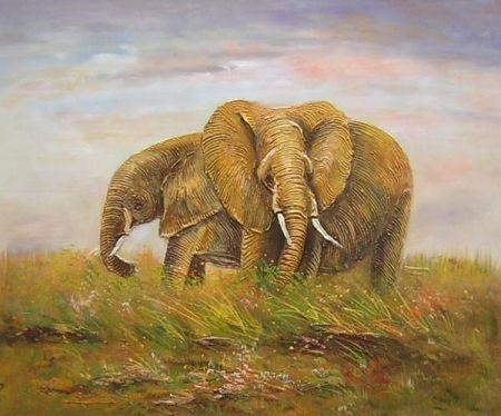 Obraz - Sloni