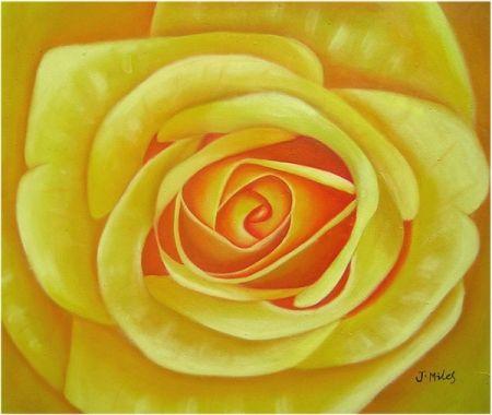 Obraz - Žlutá růže