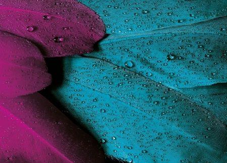 Tištěný obraz - Jarní déšť